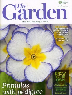 The garden March 15